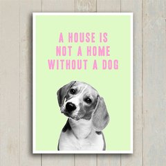 Poster A house is not a home without a dog - Encadreé Posters