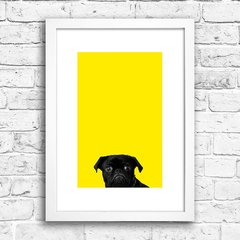 Poster Black Pug - Yellow na internet