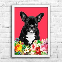 Poster French bulldog na internet