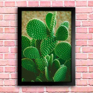 Poster Cactus na internet