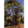 Cezanne - Le Grand Pin na internet