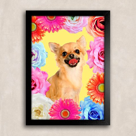 Poster Chihuahua Smile