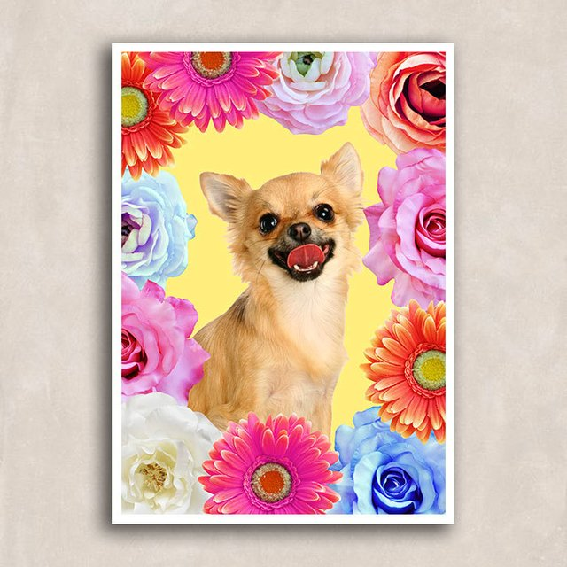 Poster Chihuahua Smile - comprar online
