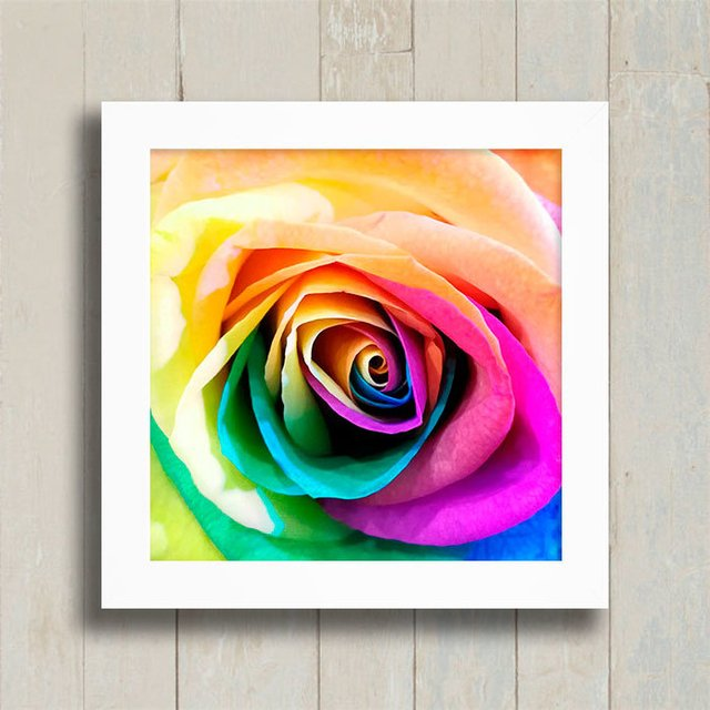 Quadro Colorful Rose - comprar online