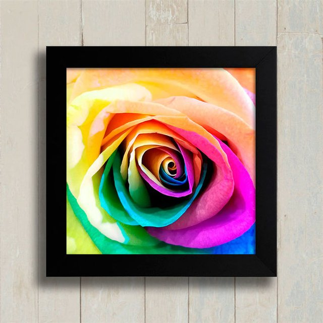 Quadro Colorful Rose na internet