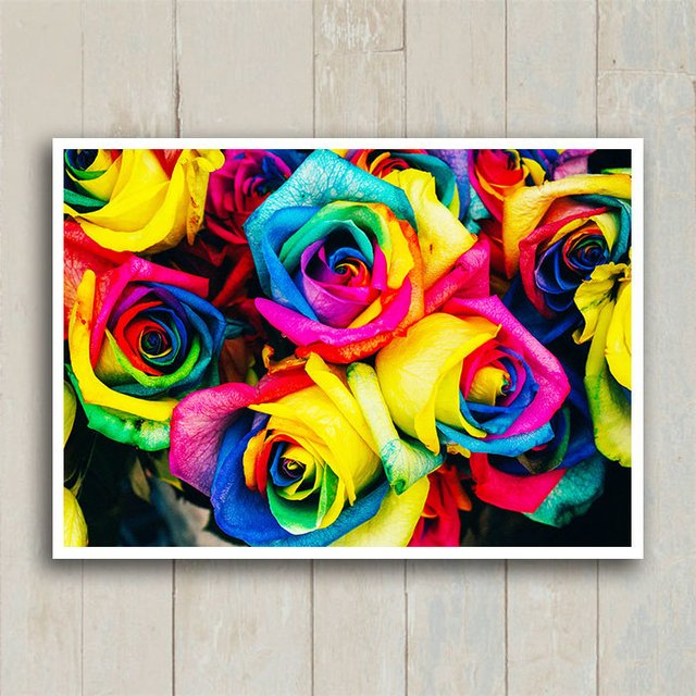 Poster Colorful Roses - loja online