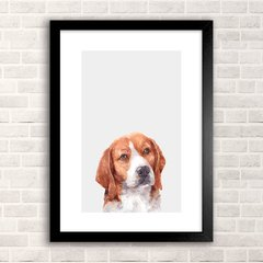 Poster Beagle