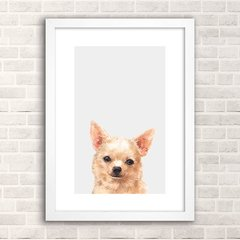Poster Chihuahua - comprar online