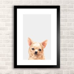 Poster Chihuahua
