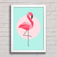 Poster Flamingo na internet