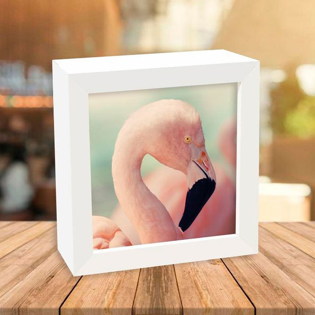 Quadro Box Flamingo Head