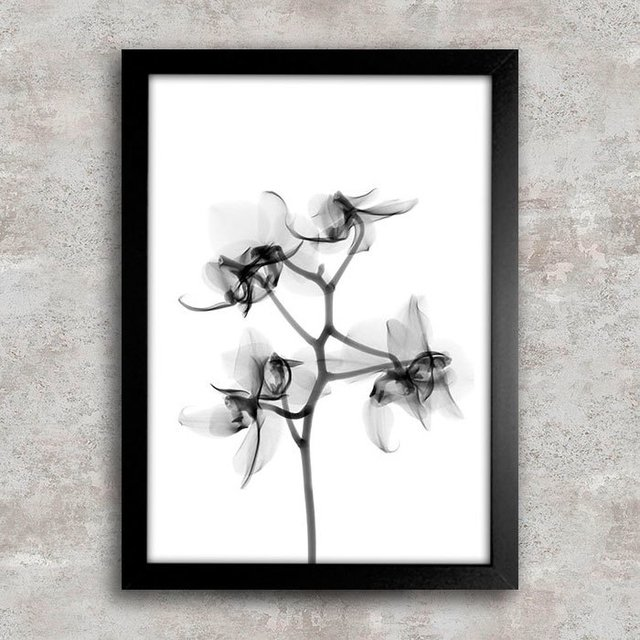 Poster Flower X-Ray