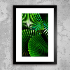 Poster Green Plant