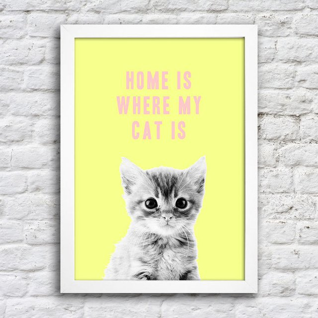 Poster Home is where my cat is na internet