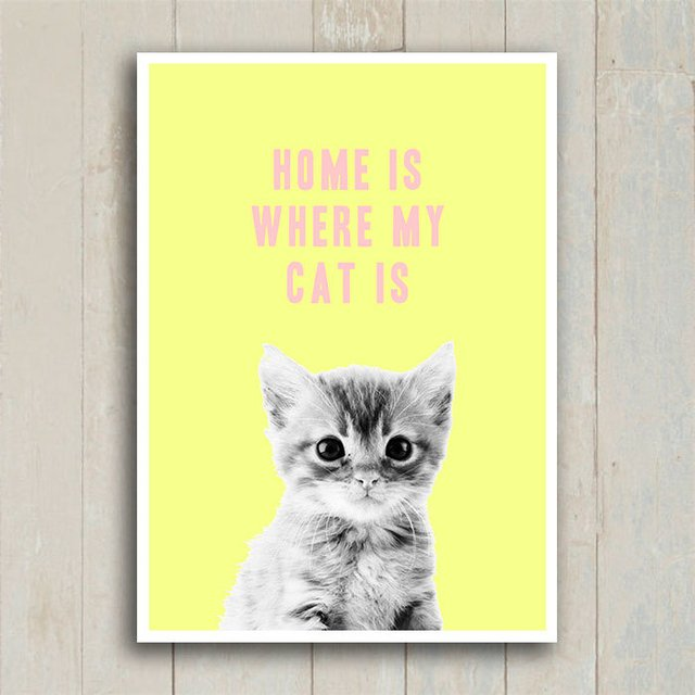 Poster Home is where my cat is
