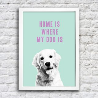 Poster Home is where my dog is na internet