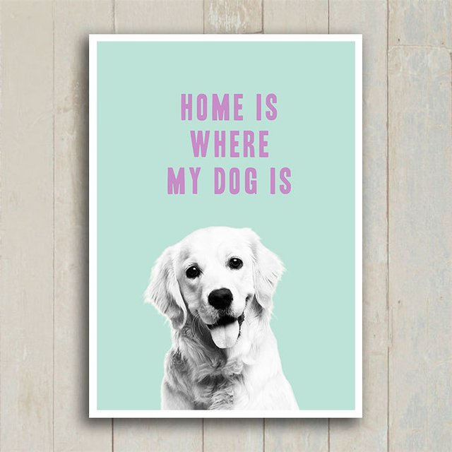 Poster Home is where my dog is