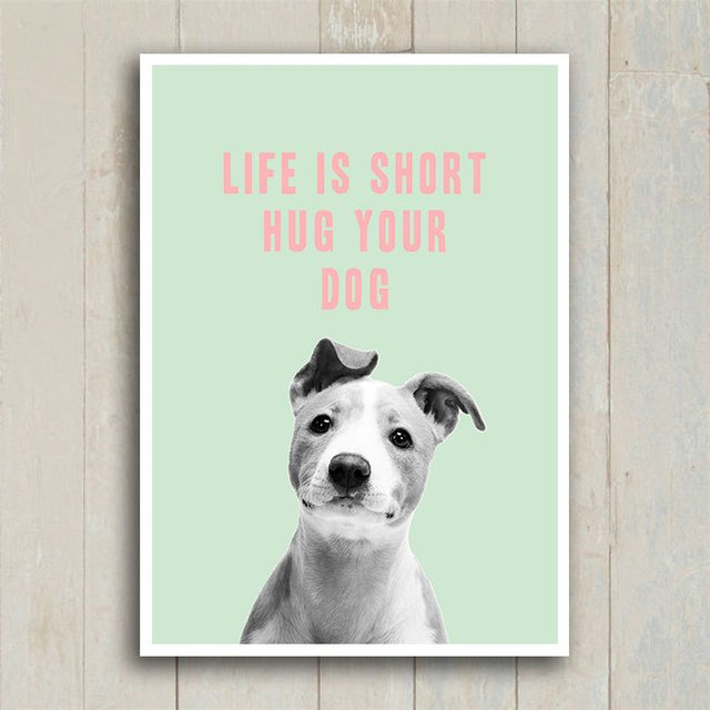 Poster Life is short hug your dog