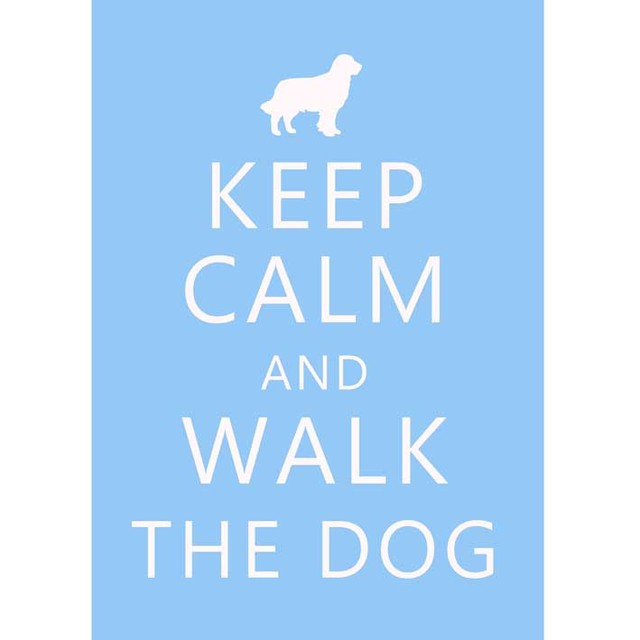 Poster Keep Calm and Walk the Dog - loja online