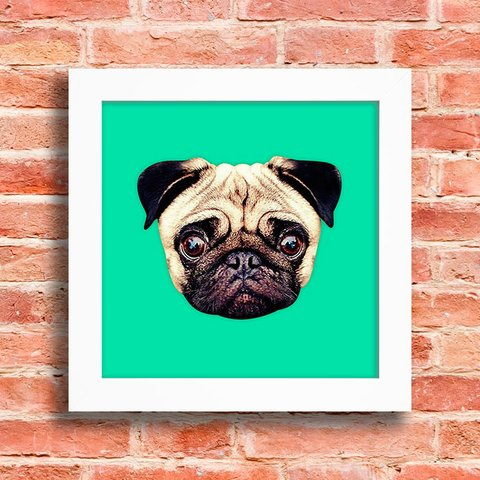 Quadro Pug Colors - Green