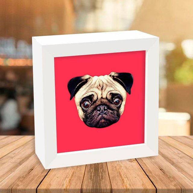 Quadro Box Pug Red na internet