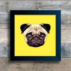 Quadro Pug Colors - Yellow