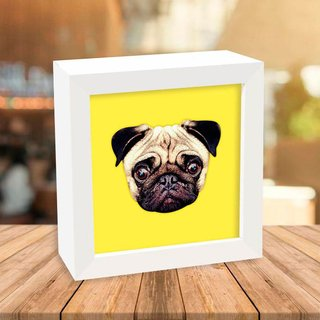 Quadro Box Pug Yellow na internet