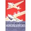 City Of New Yorke Municipal Airports na internet