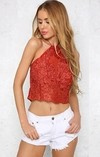Cropped Top de Renda Frente Única - Ref.808