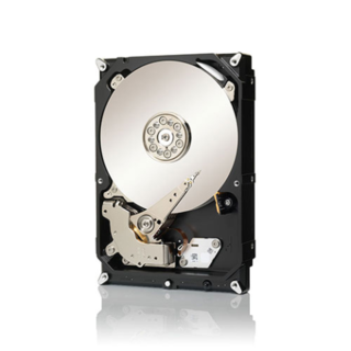 HD 1TB SEAGATE SATA ST31000524AS en internet