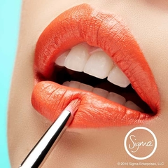SIGMA L04 - DETAILED LIP BRUSH - Vanity Shop