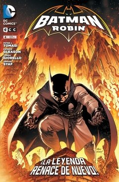 BATMAN Y ROBIN  04