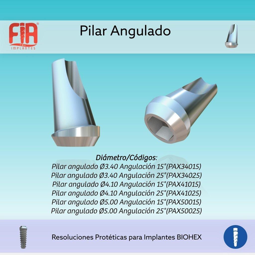 Pilar Angulado