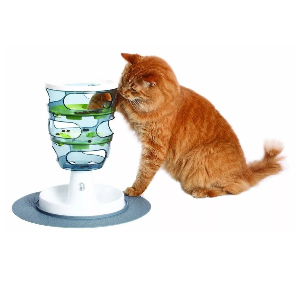 cat pee on carpet home remedy