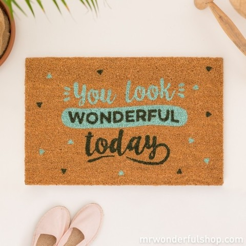 Felpudo - You look wonderful today - Mr. Wonderful - comprar online