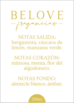 BLENDS - fragancias exclusivas - - comprar online