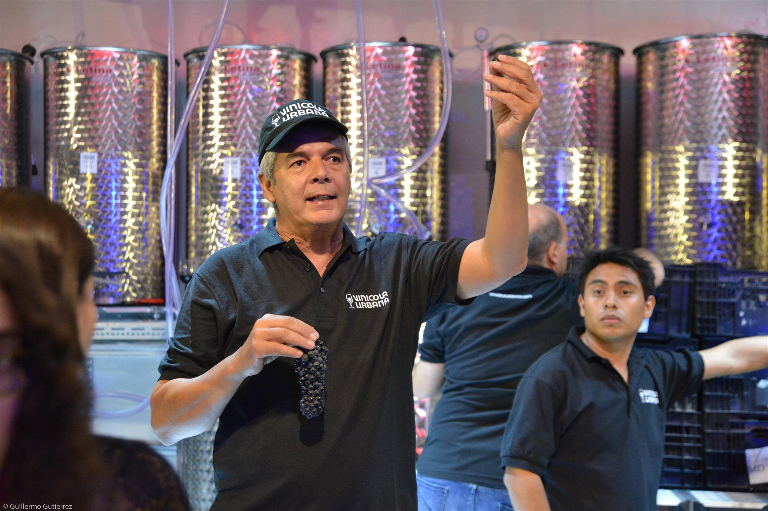 Hugo ne Primera vinificacion vinicola urbana