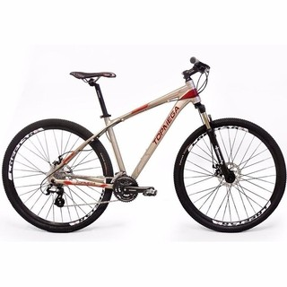 Bicicleta Top Mega Mountain Rod 29 Armor Shimano Suspension