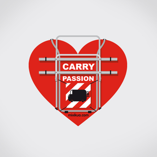 CARRY PASSION