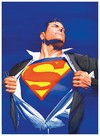 Alex Ross Superman Forever [2005] - comprar online
