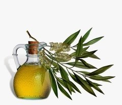 Aceite Esencial Natural de Tea Tree