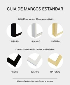 Cuadro Palm Leaf 35x50 Marco Chato Natural - comprar online