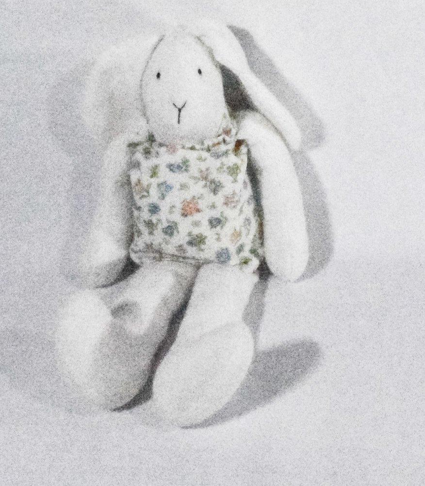 Conejo Patas largas