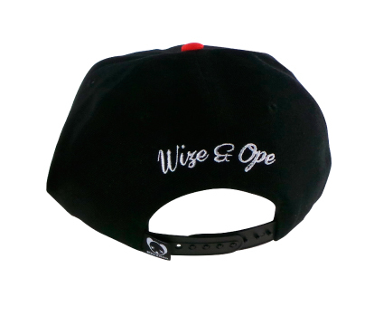 GORRA LOGO FAT en internet