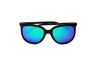 POLARIZED GLASSES