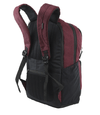 Mochila Samsonite Nine Ten Bordeux en internet