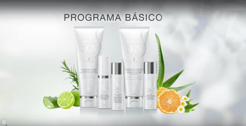 SKYN  - Programa Básico.