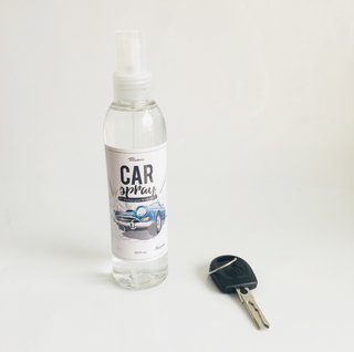 CAR SPRAY x 6 unidades