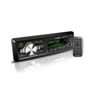 Autoestereo Panter RGB USB Mp4 Aux EW-1100