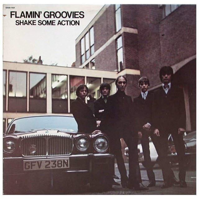 Flamin' Groovies -  Shake Some Action (Vinilo)